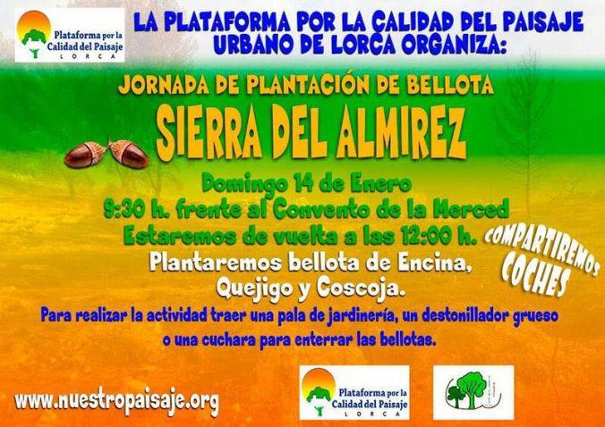 cartel reforestación