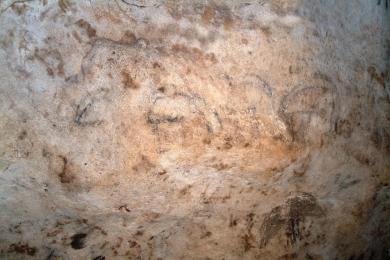 cueva 4